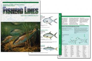 Florida DEP Fishing Lines Magazine