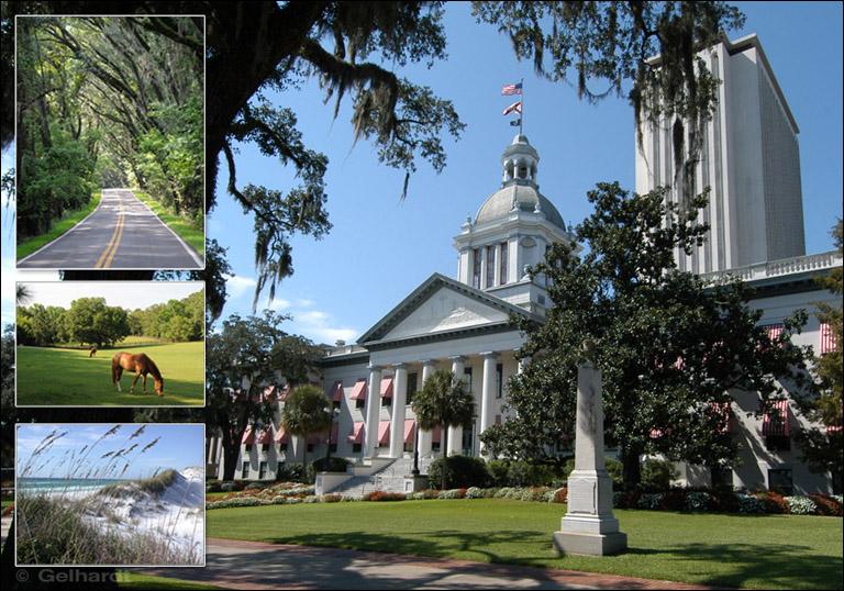 Tallahassee Region Photography