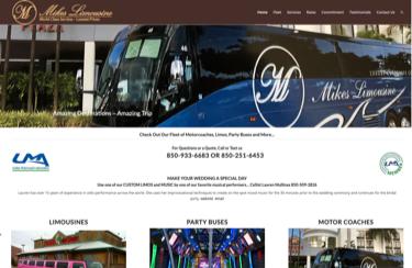 Mikes Limousine - Limousine & Charter Bus